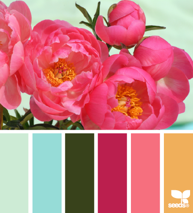 PeonyPalette